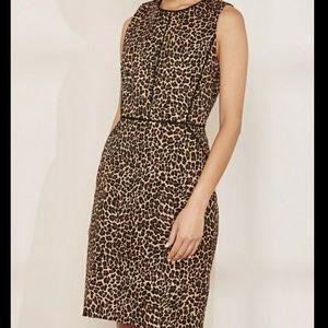 J. Crew leopard sheath dress size 8
